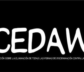 Solicitud Información Recomendaciones Comité CEDAW