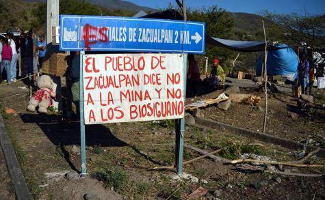 AMENAZAN A LOS INTEGRANTES DE LA ORGANIZACIÓN BIOS IGUANA, A.C.  POR CASO ZACUALPAN, COLIMA