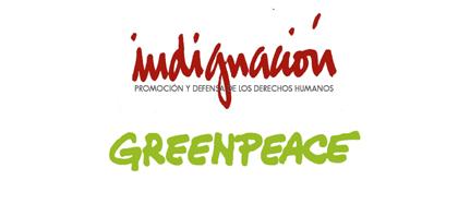 Indignación | Denuncian penalmente a quienes resulten responsables por sembrar soya transgénica ilegal en Campeche