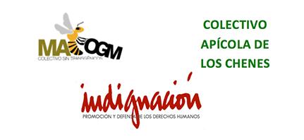 Presentan ante Juez de Campeche irregularidades en Consulta por soya genéticamente modificada