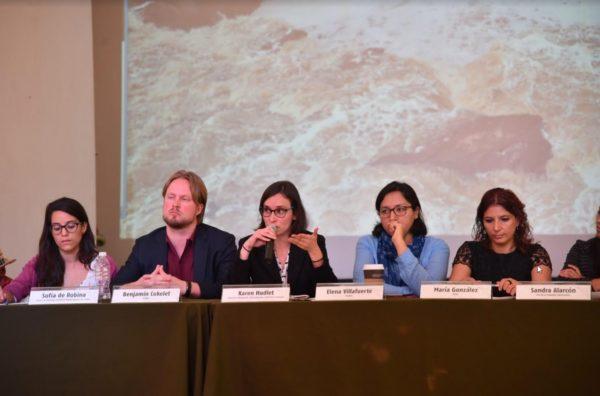 El Estado mexicano debe cumplir las recomendaciones del Grupo de Trabajo de la ONU sobre empresas y derechos humanos