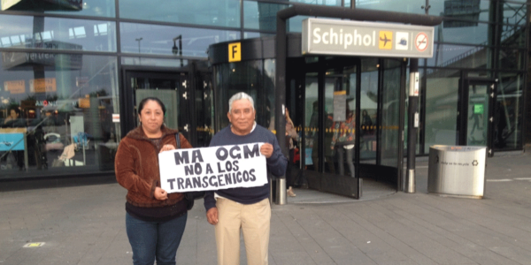 Mayas llevan a Monsanto al banquillo de los acusados en corte internacional