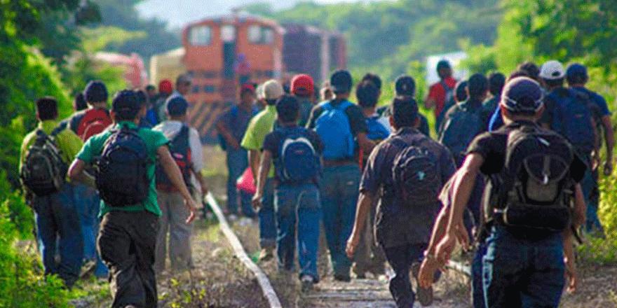 derechos-de-asilo