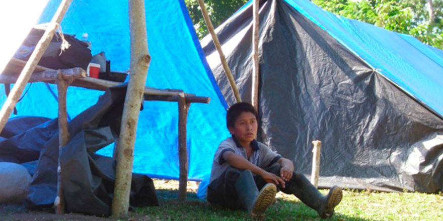 Nueva Esperanza Sierra Lacandon, Desalojada En 2011.